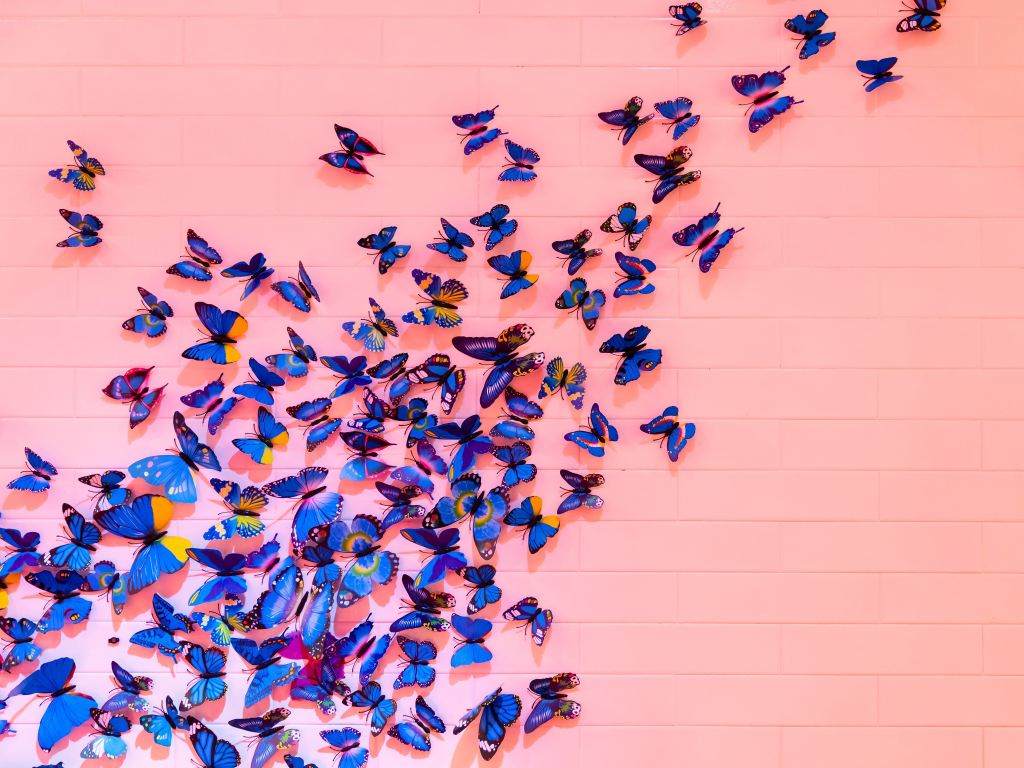 bright blue butterflies against pink wall