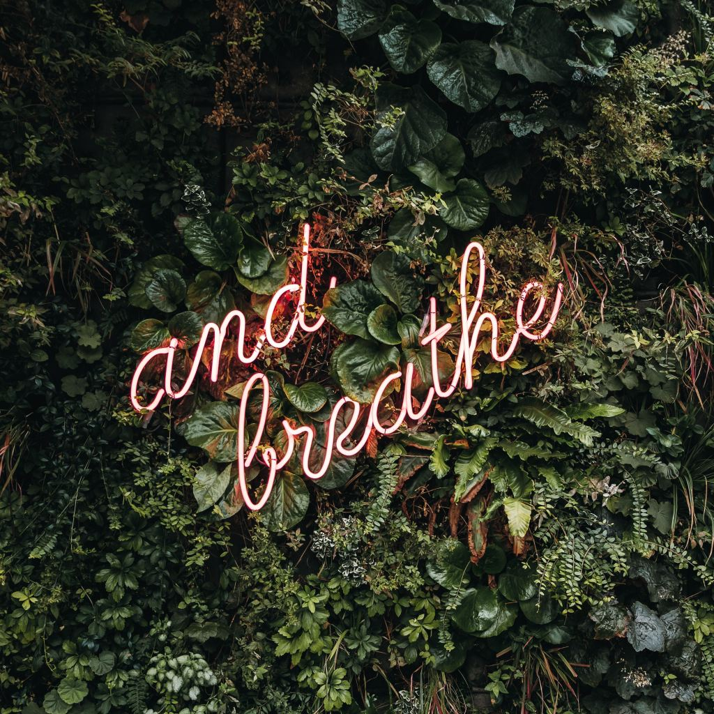 """and breathe"" neon sign over plants"