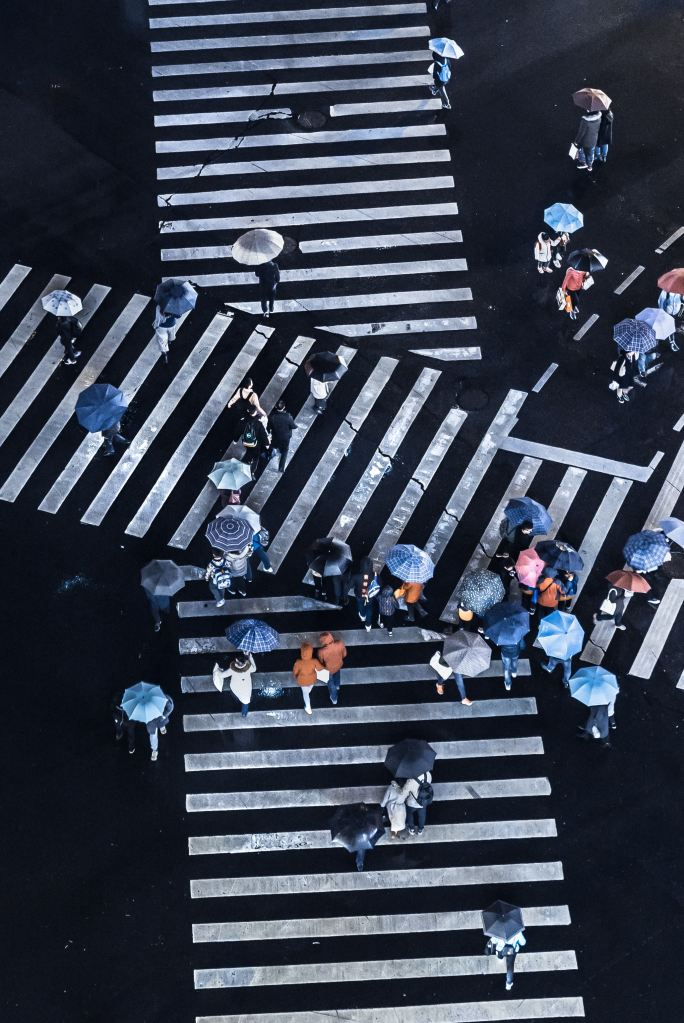 people with umbrellas on crosswalk